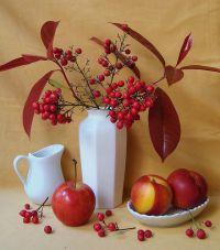 О пользе сезонных фруктов. Часть 2-я